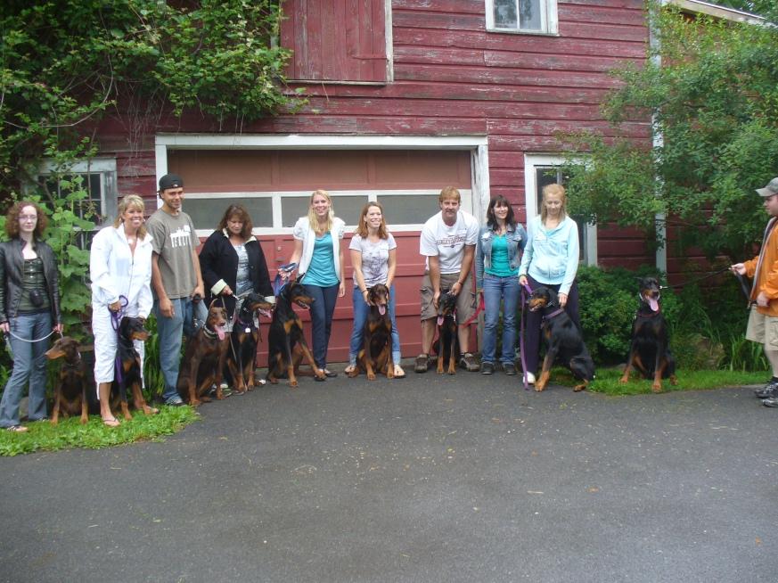6-9-12 Puppy Reunion